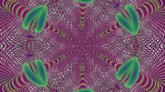 Typta Spin 2 Polar_1
