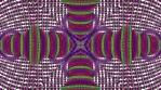 Typta Spin Loop 1_1
