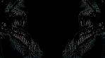 20180918_003_4K-Palms-2Nice_Silhouette_loop