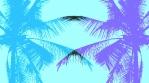 PalMix_Loop_Color-Dodge