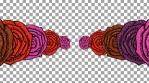 Fiesta Macabre - 4k loop: tattoo roses