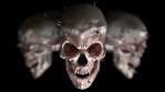 Halloween Skulls Loop
