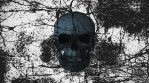 Abstract Background Halloween Static Scary Skull 17