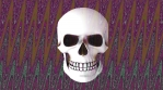 Abstract Background Halloween Static Scary Skull 22