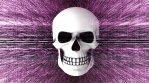 Abstract Background Halloween Static Scary Skull 26