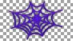 NEON SPIDERWEB_1
