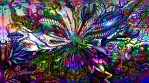 Psychedelic 047