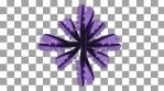 Purple Sea Plant