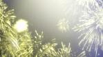 Fireworks_20