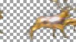 Herd of Fast Gold Reindeer Loop