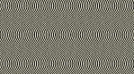Hypnotic Curvy Zebra Lines 01