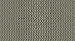 Hypnotic Curvy Zebra Lines 03