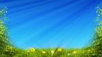 Springtime Meadow