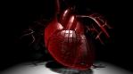 3D HEART BEAT  HD