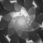 Mesmerizing Soft Geometry Spiral 08