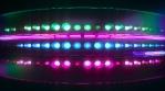 Looping futuristic neon glowing blinking light grid