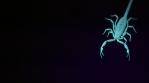 Scorpion 017