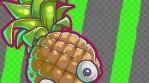 RENDER_fruit flash