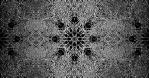 Organic_Abstract_05