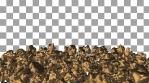 Gold Nuggets Frame