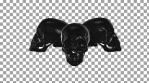 Dark Skull Trinity Alpha 01 1