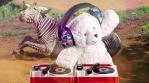 DJ Teddy Bear with Mr Zebra