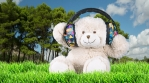 DJ Teddy Bear in the forest