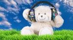 Dj Teddy Bear headphones nature background