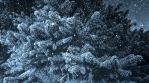 Dark Winter Background
