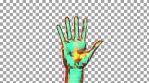 Hands Single 5