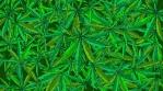 Cannabis Vector BG