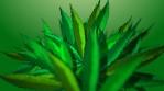 BG Reveals Cannabis Leaf - Classic