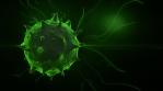 rotation green coronavirus covid-19 corona virus