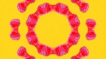 Kaleidoscopic VJ Loop KSBB02  - Summer Berry Blasts - Abstract psychedelic background patterns