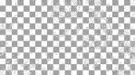 Paisley Pattern 02