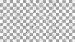Paisley Pattern 03