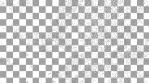 Paisley Pattern 04