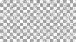 Paisley Pattern 06