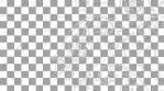 Paisley Pattern 07