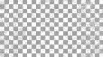 Paisley Pattern 08