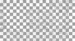 Paisley Pattern 09
