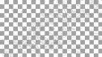 Paisley Pattern 10
