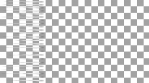 LINES_PAN RIGHT_LINES_ALPHA
