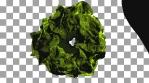 Organic Forms VJ Loop 1