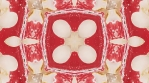 Mushroom kaleidoscope. White on red backdrop. Organic abstract psychedelic kaleidoscopic patterns.