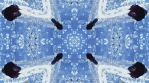 Black cherry kaleidoscope. Black on blue backdrop. Organic abstract psychedelic patterns.