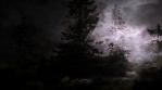 Lightning Storm In The Forest