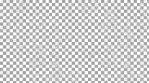 Paisley 4K Pattern 06