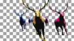Herd of Multicolor Elks Running