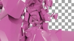 Shattered Pink Elephant